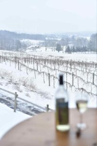 Baraboo Bluff Winery vineyard in winter